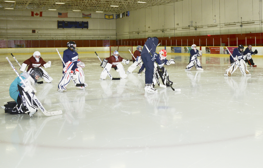 Pre Season Goalie Program Hockey Training Content Vancouver And